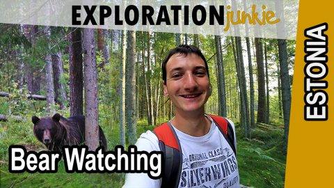 [Travel Video] Bear Watching From a Hide in Estonia