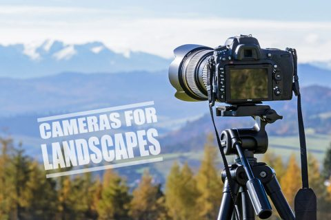 Best Camera for Landscape Photography – Complete Guide