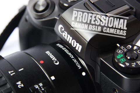 Best Canon Camera for Professional Photography – Your Ultimate Guide